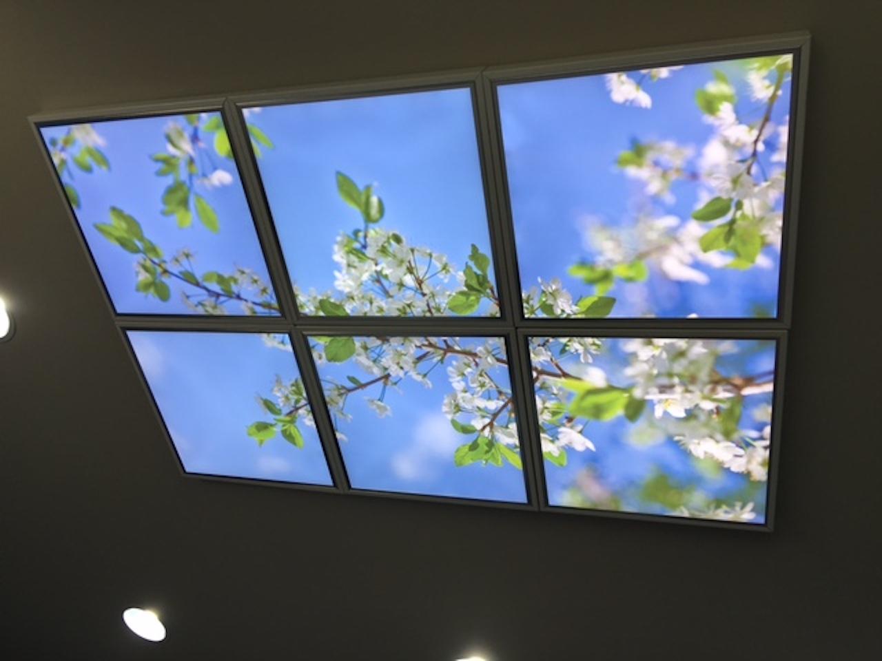 Ciel Cerisier B 6 Dalles.JPG