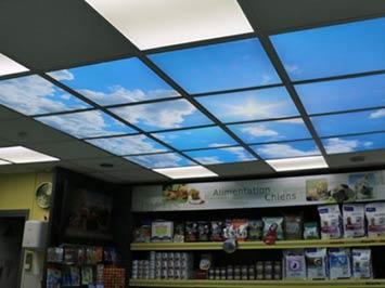 plafond réalisé avec 16 dalles